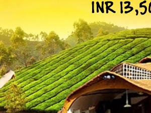 God's Own Country - Kerala for Honeymoon Photos