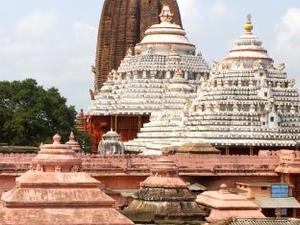 Golden Triangle Tour Of Odisha With Chilika Lake Photos