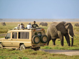 Backpackers Day Trips - Tanzania Photos