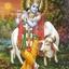 Krishnaa Udaipur