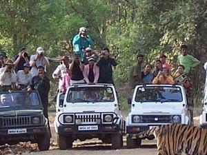 Kanha - Pachmarhi, Madhya Pradesh Tour Package