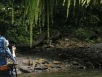 Leuser National Park Expedition