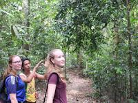 Sumatra Overland Tours and Rafting