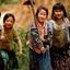 Vietnam Tonk