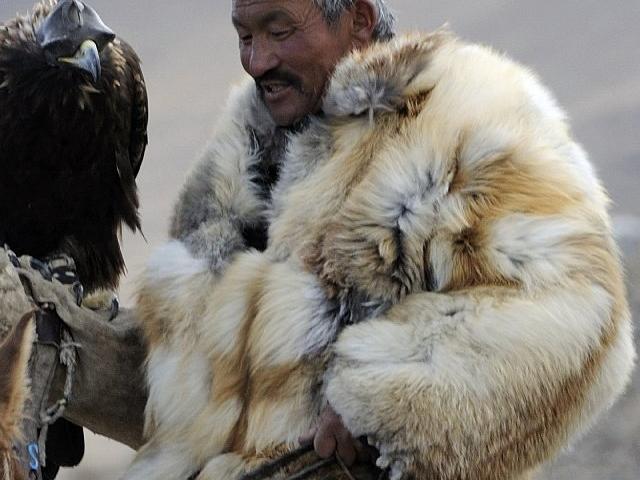 Mongolian Eagle Festival Photos
