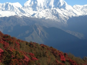 Annapurna Panorama Trekking Photos