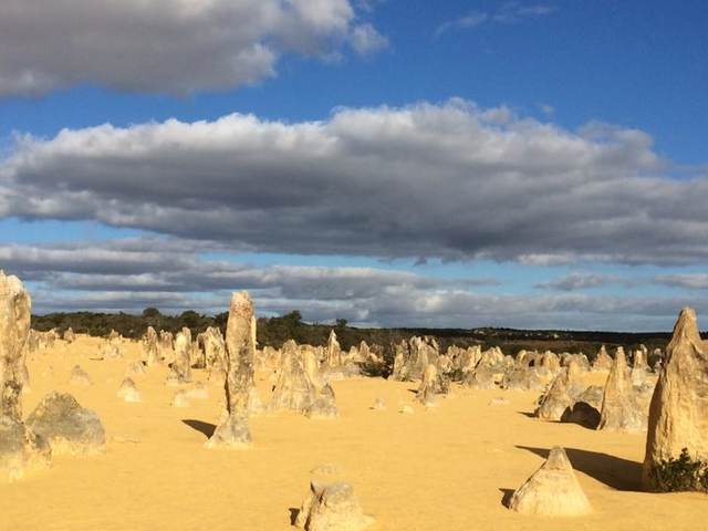 Pinnacles Desert, Wildlife Park & Lancelin Sand Dunes Photos