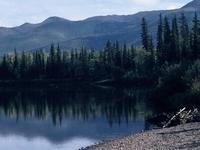 Nowitna River