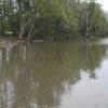 Iroquois River