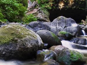 Butte Creek