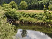 Millicoma River