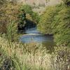South Fork John Day River