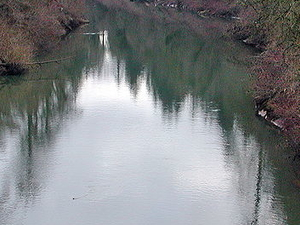 Yamhill River