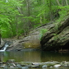 Cresheim Creek