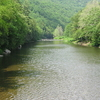 Loyalsock Creek