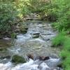 White Deer Hole Creek