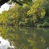 Stones River