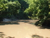 Buffalo Bayou