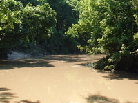 Buffalo Bayou