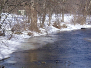 Cedar Creek