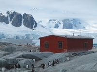 11-Day Antarctica Cruise from Ushuaia: Drake Passage, South Shetland Islands and the Antarctic Peninsula Photos