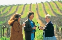 2-Day Hunter Valley Wine Tasting Tour with Overnight at Hunters Resort Photos