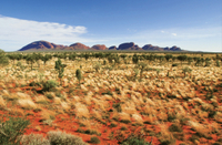 2-Day Uluru (Ayers Rock), Camel Farm and Kata Tjuta Trip from Alice Springs Photos