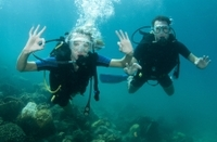2-Tank Scuba Diving Tour from Providenciales Photos