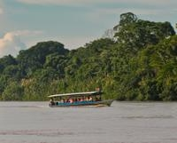 3-Day Amazon Jungle Tour at Inkaterra Reserva Amazónica
