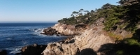 3-Day California Coast Tour: San Francisco to Los Angeles  Photos