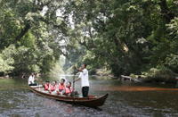 3-Day Taman Negara Adventure from Kuala Lumpur Photos