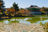 3-Day Tour from Seoul: Gyeongju and Busan Photos