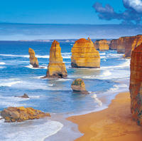 4-Day Melbourne Tour: City Sightseeing, Great Ocean Road and Phillip Island Photos