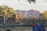 6-Day Larapinta Trail Walking Tour from Alice Springs Photos