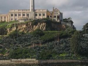 San Francisco Shore Excursion: Alcatraz and City Tour Photos