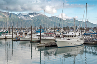 Anchorage Shore Excursion: Pre-Cruise Transfer and Tour from Anchorage to Seward Photos