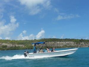 Island Safari and Stingray Fantasy Antigua Photos