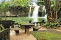 Atherton Tablelands, Paronella Park and Millaa Millaa Waterfall Circuit Eco-Tour  Photos