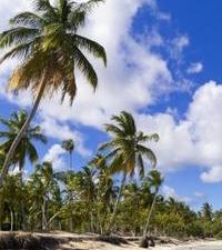 Bahamas East End and Lucayan National Park Tour Photos