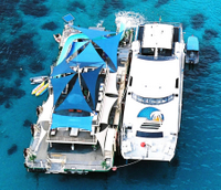 Bali Reef Cruise and Lembongan Island Day Trip Photos