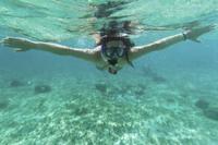 Barbados Snorkel Adventure in Carlisle Bay Photos
