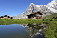 Bernese Oberland Alps Day Trip from Lucerne: Kleine Scheidegg and Jungfraujoch Panorama Photos