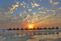 Broome City Sightseeing Tour with Optional Camel Ride Photos
