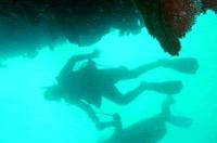 Cabo San Lucas 2 Tank Customized Dive Photos