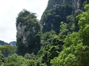 Khao Sok Full Day Jungle Safari from Phuket Photos