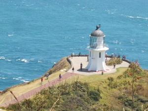 Cape Reinga and 90 Mile Beach Tour from Bay of Islands Photos