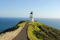 Cape Reinga Half-Day Tour including Scenic Flight Photos