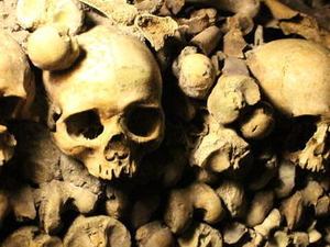 Skip the Line: Catacombs of Paris Small-Group Walking Tour Photos