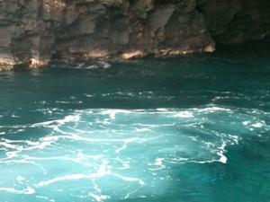 Zodiac Raft and Snorkel Adventure Photos