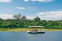 Chobe River Cruise with Transport from Kasane Photos